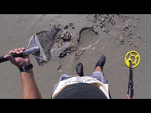 Myrtle Beach Detecting  Smart Phone, 5 Rings, Shark Teeth & More