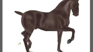 Andalusian Horse Speed Painting