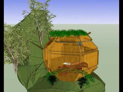 bamboo capsule