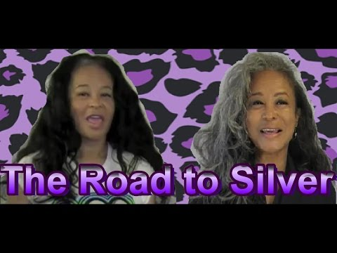 The Road to Silver - Transition to Grey Hair v16