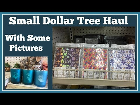 Small Dollar Tree Haul 🤑and Picures