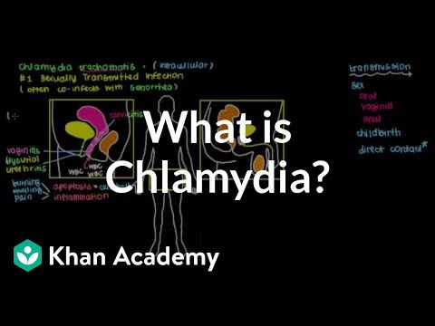 What is chlamydia? | Infectious diseases | NCLEX-RN | Khan Academy