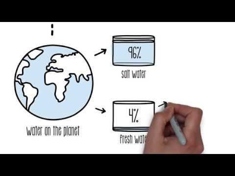 Explaining The Water Cycle | Sustainability