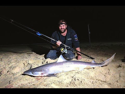 How to catch Landbased Sharks on the surf beach in Mallacoota, Oz Fish TV
