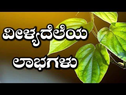 Sexual & Other Health Benefits Of Betel Leaves | ವೀಳ್ಯದೆಲೆಯ ವಿಭಿನ್ನ ಉಪಯೋಗಗಳು