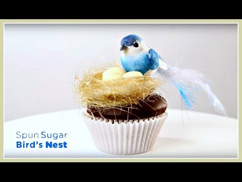 Spun Sugar Nest Isomalt Decoration by Chef Charity | Project Cupcake Craftsy Cake Decorating