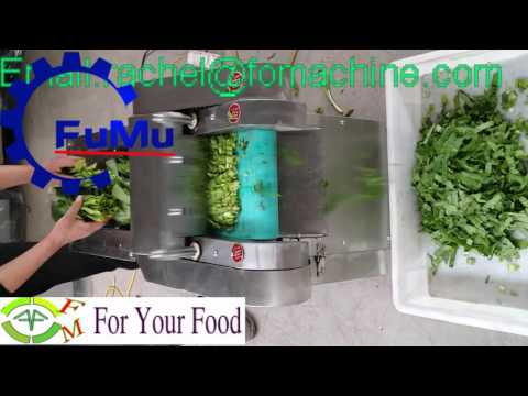 Hot sale in Amazon Vegetable cutter