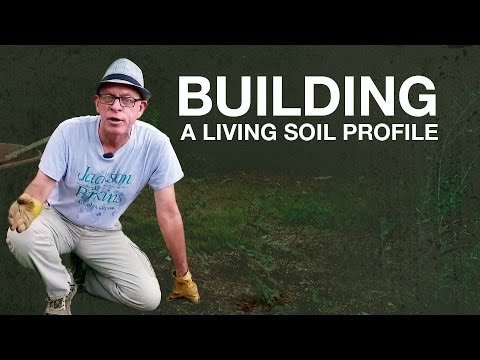 Building A Living Soil Profile with Paul Zimmerman