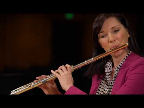 What does a flute sound like? (Ode to Joy)