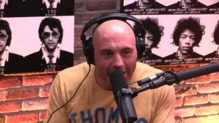 Download Joe Rogan - The Pursuit of Wealth is Hollow Video