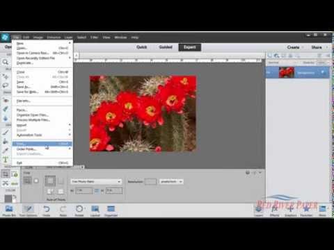 Using printer color profiles Photoshop Elements 11 12 Canon Windows
