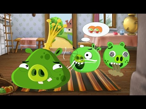 Angry Birds: What's the taste of it? (Animation)