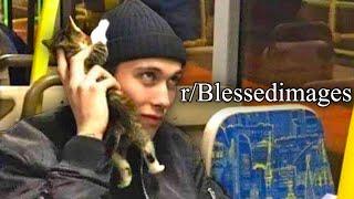 r/Blessedimages | CAT PHONE