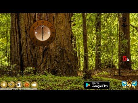 Redwood National Forest Escape walkthrough Wowescape..