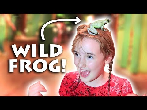 A Wild Frog Jumps on Girl's Head! * Hilarious *