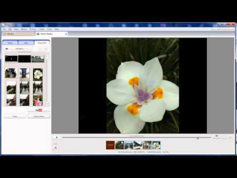 How to make a Video from Picasa