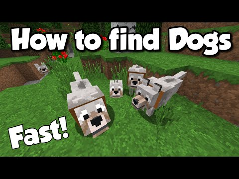 Minecraft: How to find Dogs (Wolves) FAST & EASY!! [1.8]
