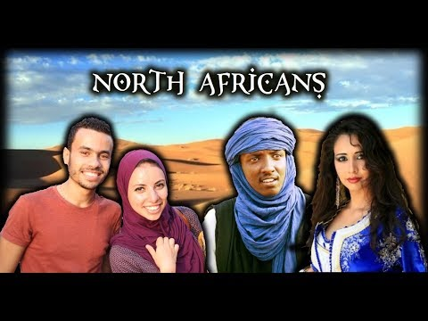 Are North Africans White, Black or Middle Eastern? Genetics of Egypt, Morocco , Algeria and More!