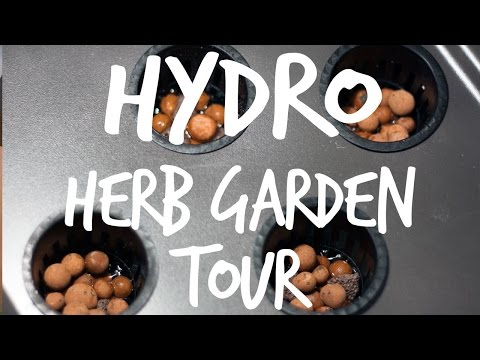Building a Cheap Hydroponic Herb Garden