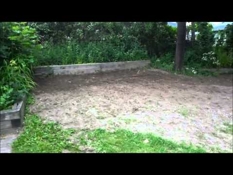 Shoveling A Lot Of Dirt-DIY Backyard Landscaping Progress