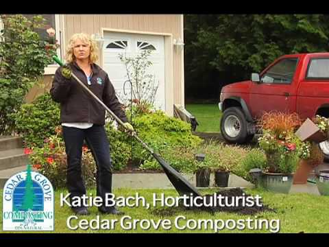 How To Top Dress A Lawn Using Cedar Grove Compost