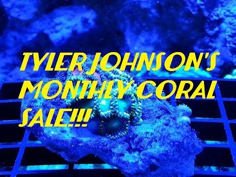 Introducing Tyler Johnson's Monthly Coral Sale!!!