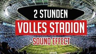 Stadionatmosphäre für Geisterspiele (2 Stunden)
