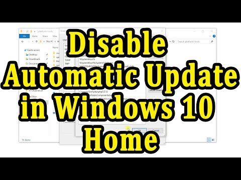 How to disable windows automatic update in Windows 10 Home edition.
