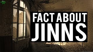 Cool Fact About Jinns