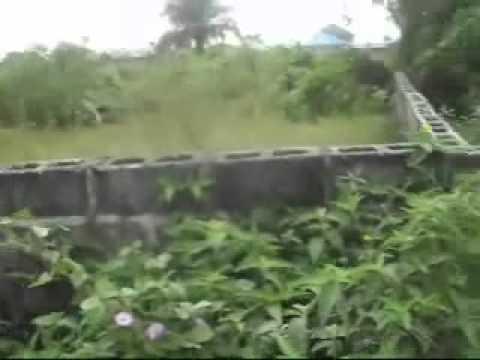 SHANGOTEDO  LAND : Lagos Lekki real estate properties