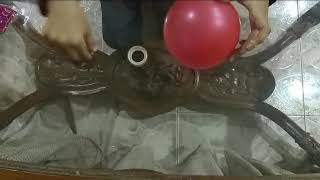 Balloon Tricks_ How to insert a pin in a balloon without bursting it!