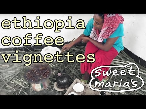 Video Travelogue: Ethiopia Coffee Vignettes