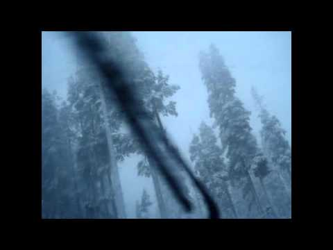 Snow Fall in Lake Tahoe
