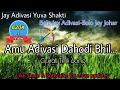 Bolo Jay Adivasi Bolo Jay Johar Amu Adivasi Dahodi Bhil Jays Adivasi Timli Song 2017 mp3