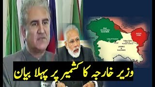 Pakistan Foreign Minister Talking About Kashmir ||Shah Mahmood Qureshi On Pak India Relations