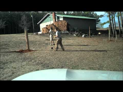 Building a grape and muscadine trellis behind dad's shop - time lapse