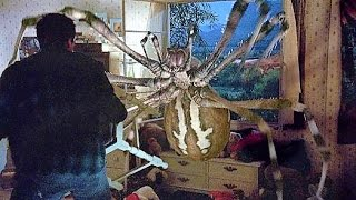 20 Epic Scary Creatures from Movies