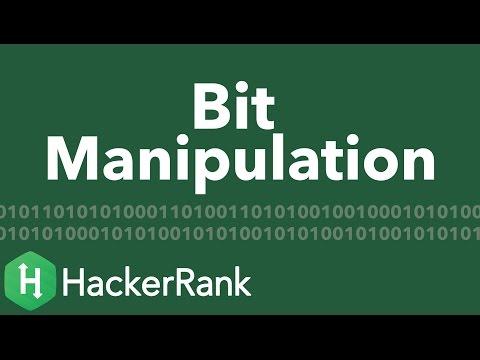 Algorithms: Bit Manipulation