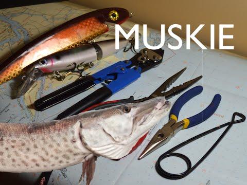 MUSKY FISHING - PROPER GEAR