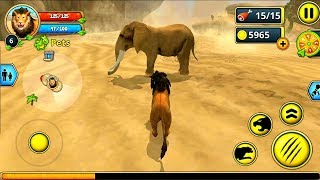 Lion Family Sim Online Android Gameplay #3