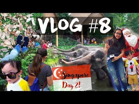 VLOG || Singapore Day 2, Singapore Zoo Adventure & Orchard Road!