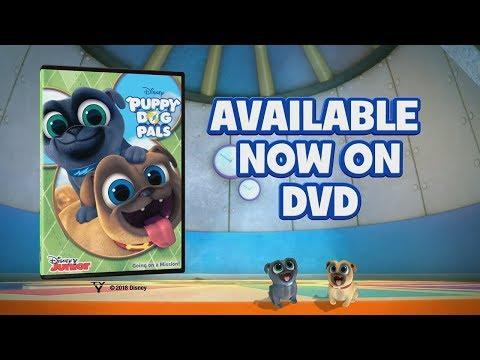 Puppy Dog Pals DVD   Disney Junior
