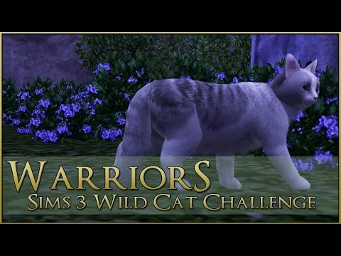 Lost Into the Mists 🌿 Warrior Cats Sims 3 Legacy - Episode #89