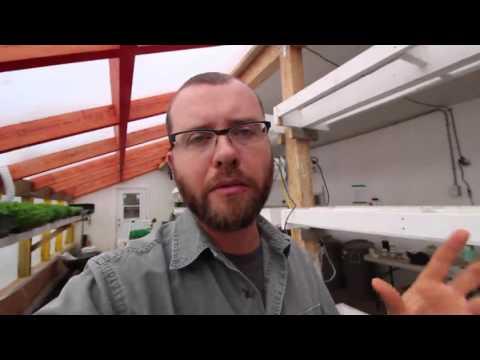 Ask The Urban Farmer -- Certified Organic?