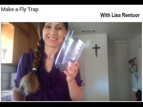 Make a Fly Trap