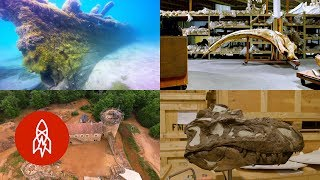 Five Amazing Archaeological Anecdotes