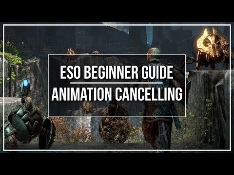 ESO Beginner Guide - Animation Cancelling