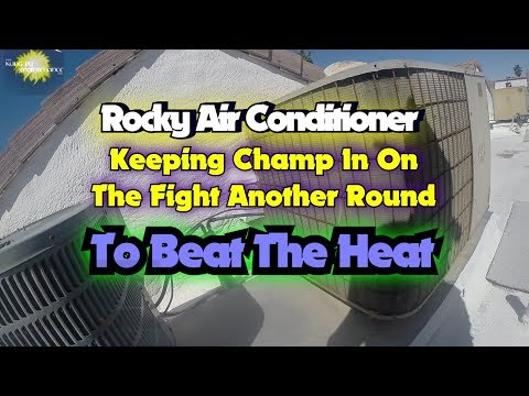 Rocky Air Conditioner Keeping Champ In On The Fight Another Round To Beat The Heat