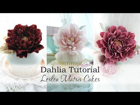 Dahlia Tutorial Preview