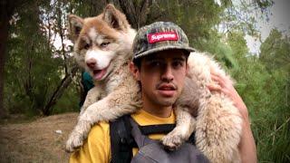 Cambiamos mascotas para acampar. Cambio y Fuera Cap 4.